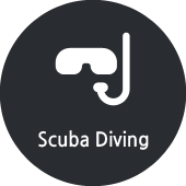 blog1_07_scubaDiving